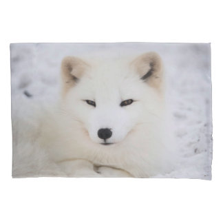 White cute fox in snow looking at you pillow case