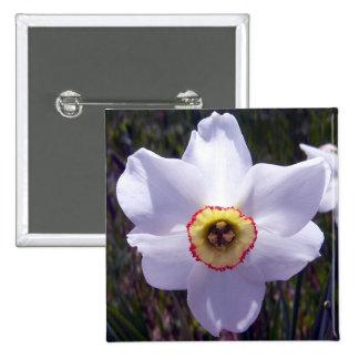 White Daffodil 1 Button