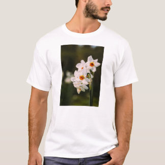 White Daffodil Flowers On Dark Green T-Shirt