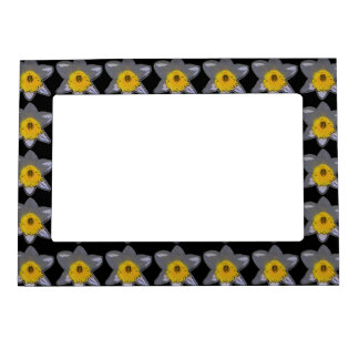 White Daffodil Magnetic Frame (Black)