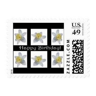White Daffodil Postage