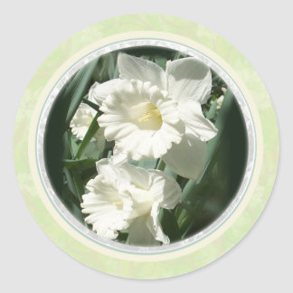White Daffodils envelope seals 1d Classic Round Sticker