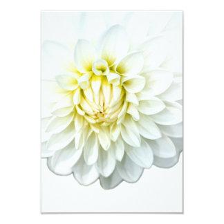 White Dahlia. Card