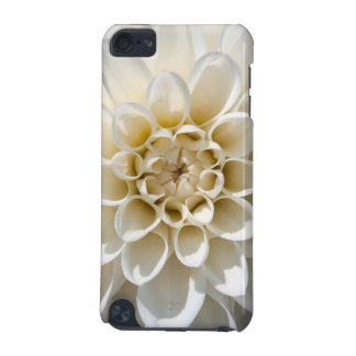 White Dahlia Flower iPod Touch (5th Generation) Covers