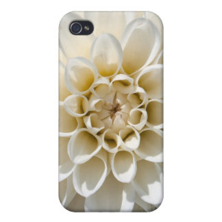 White Dahlia Flower Cover For iPhone 4
