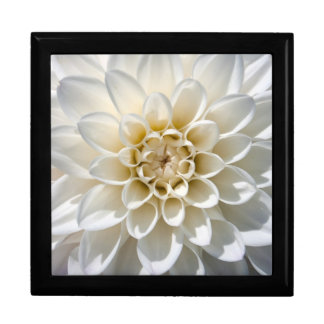 White Dahlia Flower Gift Boxes