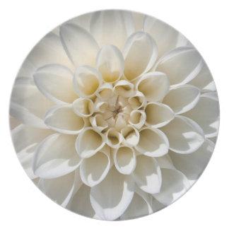 White Dahlia Flower Plates