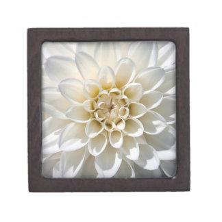 White Dahlia Flower Premium Gift Box