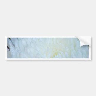 White Dahlia Petals Bumper Sticker