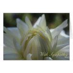 White Dahlia Sympathy Card