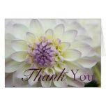 White Dahlia • Thank You Card