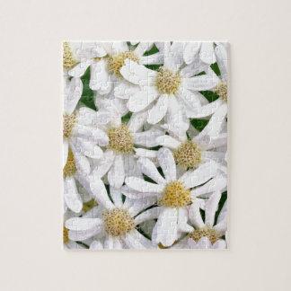 White dahlias puzzle
