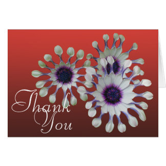 White Daisies Colorful Photo Chic Floral Thank You Card