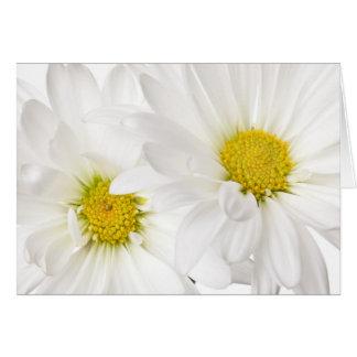 White Daisies - Customized Daisy Flower Template Card