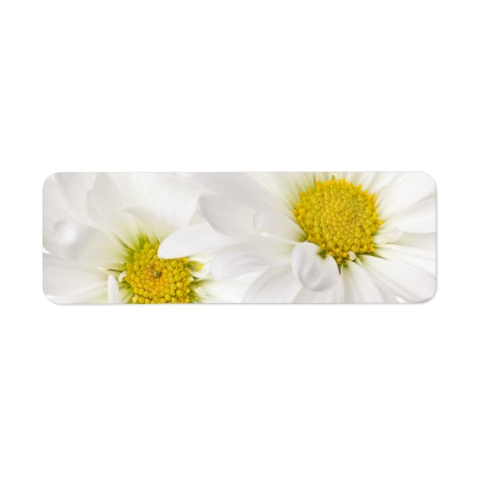 White Daisies - Customized Daisy Flower Template Label