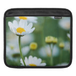 White Daisies in a Field - Customized Daisy Sleeves For iPads