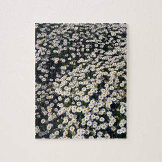 white daisies jigsaw puzzle