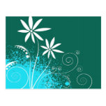 White Daisies on Green and Blue Postcard