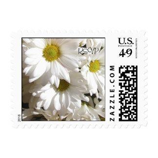 White Daisies RSVP Small Postal Square Postage