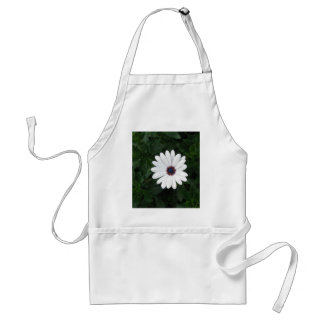 White Daisy  African Daisy purple center Adult Apron