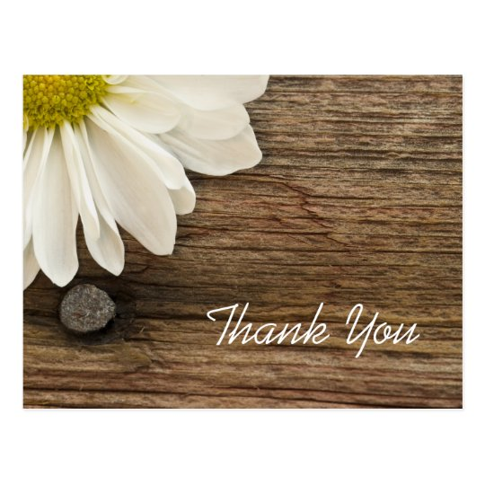 White Daisy And Barn Wood Country Thank You Postcard Zazzle