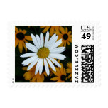 White Daisy and Blackeyed Susans Postage Stamps