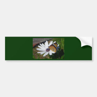 White Daisy and Butterfly Bumper Sticker