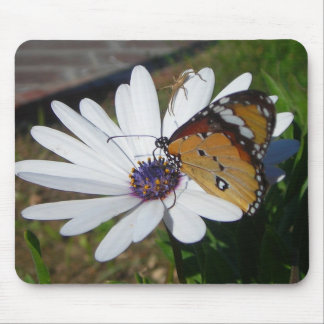 White Daisy and Butterfly Mousepad
