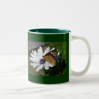 White Daisy and Butterfly Two-Tone Coffee Mug