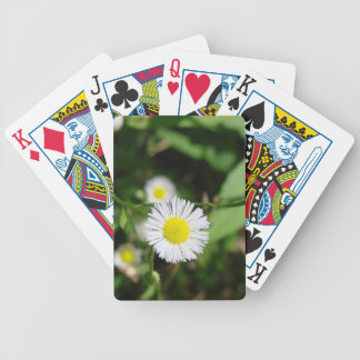 White Daisy Bicycle Playing Cards