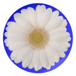 white daisy blue stress relieving spa home decor dinner plate