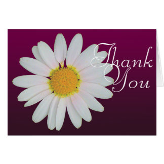 White Daisy Colorful Photo Chic Floral Thank You Card