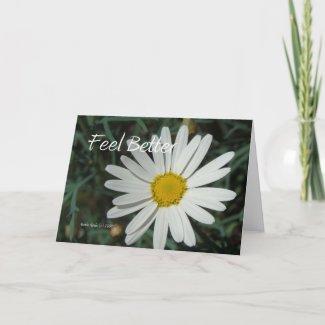 White Daisy - Feel Better - Customizable Card