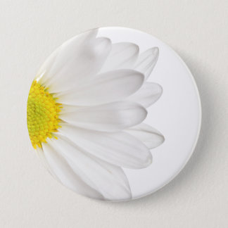 White Daisy Flower Background Customized Daisies Button