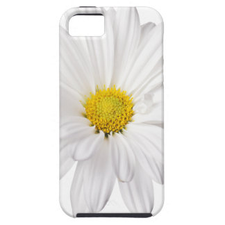White Daisy Flower Background Customized Daisies iPhone SE/5/5s Case