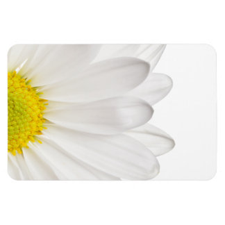 White Daisy Flower Background Customized Daisies Rectangular Photo Magnet