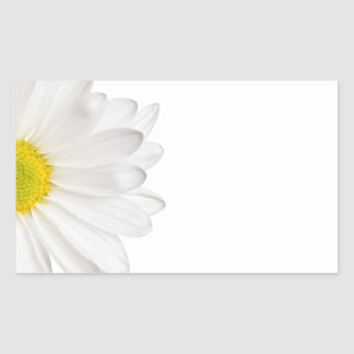 White Daisy Flower Background Customized Daisies Rectangle Stickers