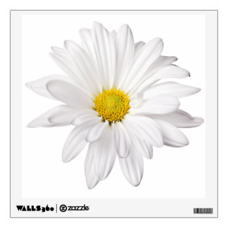 White Daisy Flower Background Customized Daisies Room Decal