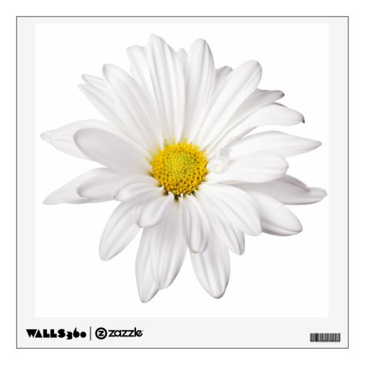 White Daisy Flower Background Customized Daisies Wall Decals