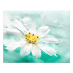 White Daisy Flower Blue Water Pond Aqua Turquoise Photo Print