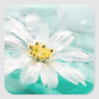 White Daisy Flower Blue Water Pond Aqua Turquoise Square Sticker