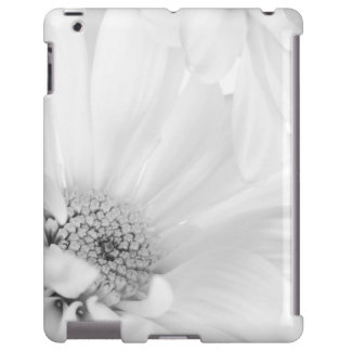 White Daisy Flower - Customized Daisies Floral
