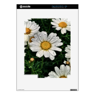 White Daisy Flower iPad 2 Decals