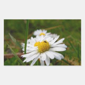 White Daisy Flower Rectangular Stickers