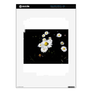 White daisy flowers on dark background skin for the iPad 2