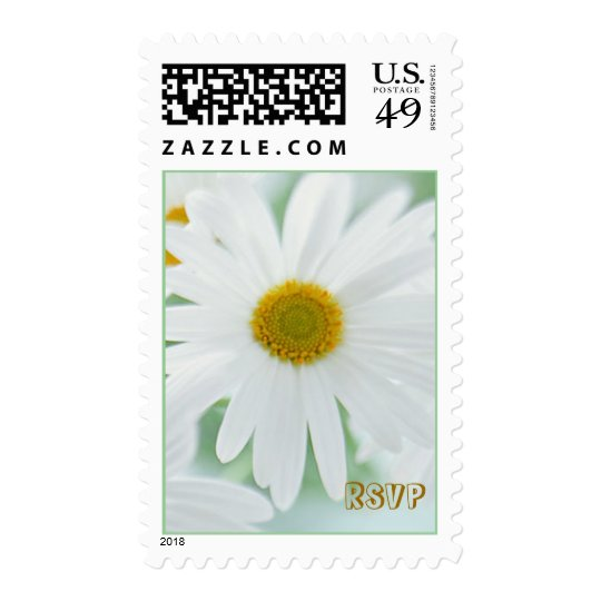 White daisy flowers Postage