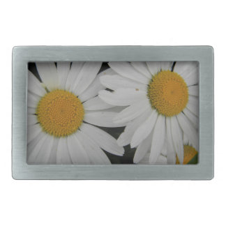 White Daisy in Full Bloom Belt Buckle