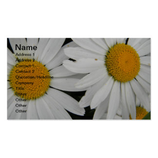 White Daisy in Full Bloom Double-Sided Standard Business Cards (Pack Of 100)
