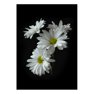 White Daisy Mums ATC Photo Card Large Business Cards (Pack Of 100)