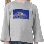 White Daisy on Blue Sky Tee Shirt